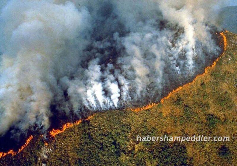 Amazon ป่าไม้ในประเทศบราซิลกำลังประสบกับไฟป่าครั้งที่เลวร้ายที่สุดในรอบเกือบ 10 ปีข้อมูลจากหน่วยงานวิจัยจากอวกาศ INPE Amazon